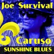 Joe Survival Caruso